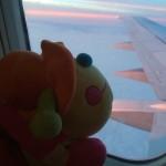 Flug1